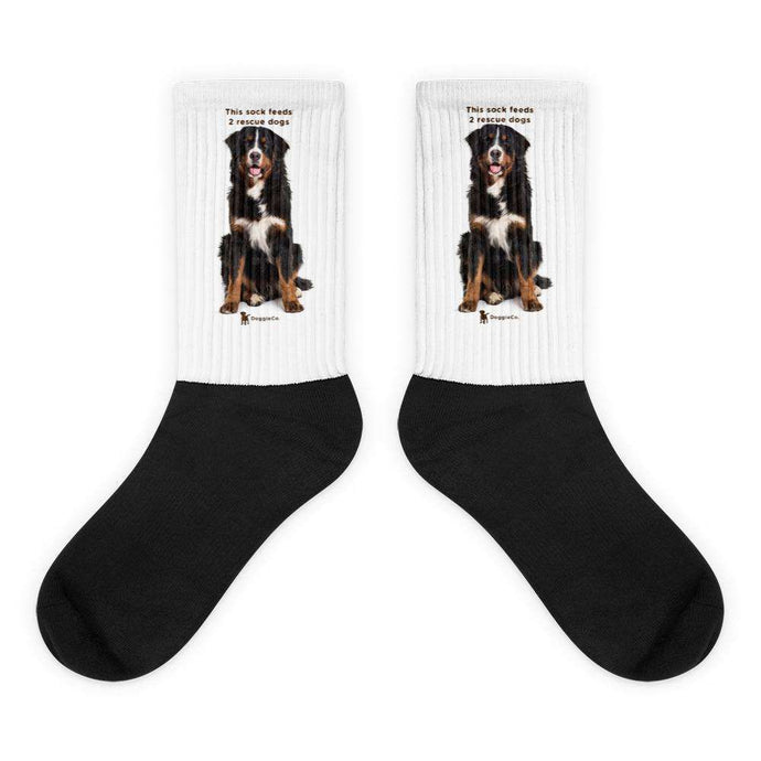 Bernese Mountain Dog Socks
