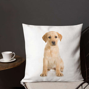 Labrador Premium Pillow