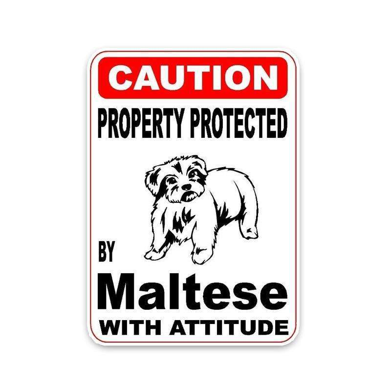Property Protected By Maltese With Attitude Car Bumper Sticker