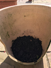 Broken pot with compost