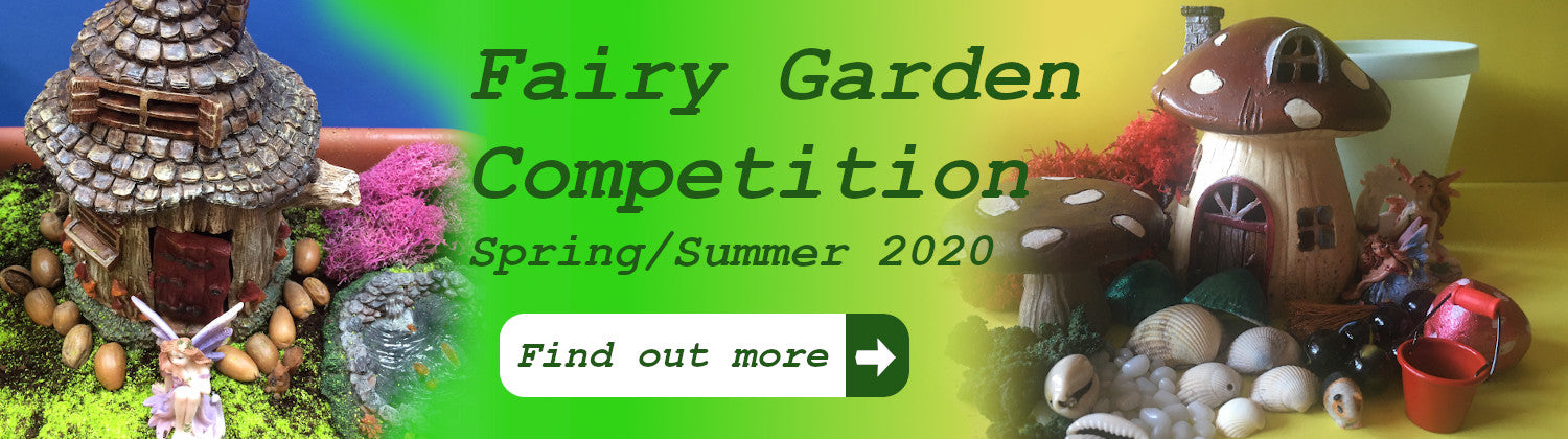 Fairy garden competition - find out more