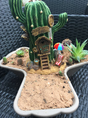 Cactus garden layer with fairy house