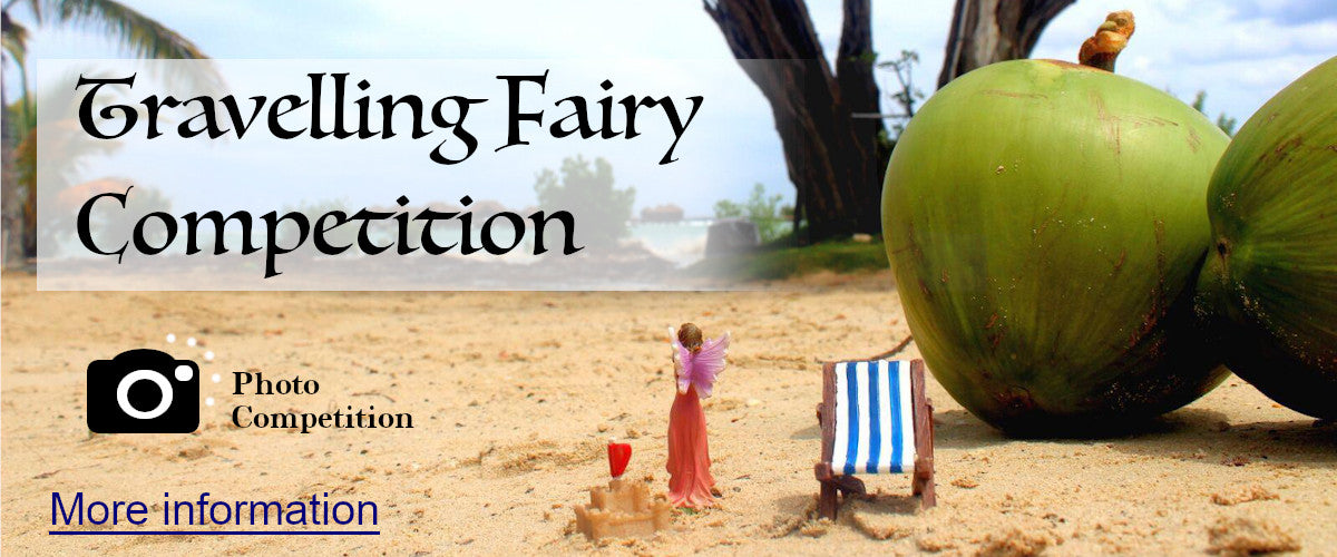 travelling fairy competition