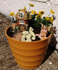 Miss Boot's yellow garden