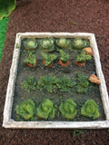 Miniature vegetable patch scenic
