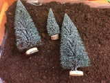 three miniature trees