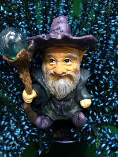 Wizard figure