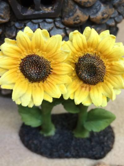 Tiny sunflowers