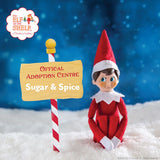 Elf on the shelf adoption centre