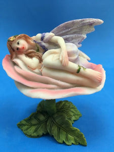 fairy on rose