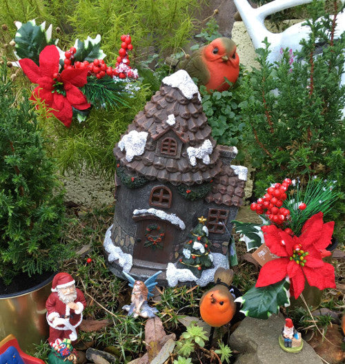 Poinsettia fairy garden