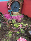 fairy garden with door