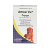 Amoxi Vet Puppy frasco 50 ml - Dechra