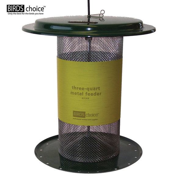 Small Green All Metal Screen Hanging 3 Quart Capacity Bird Feeder