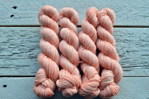 Seashells on BFL Fingering 50-gram mini skeins