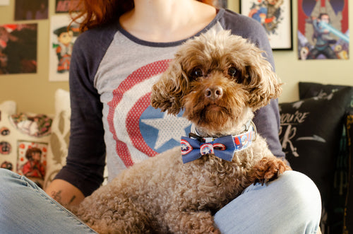 Captain America Pet Bow Tie By SweetLooks Collection - SweetLooks Collection