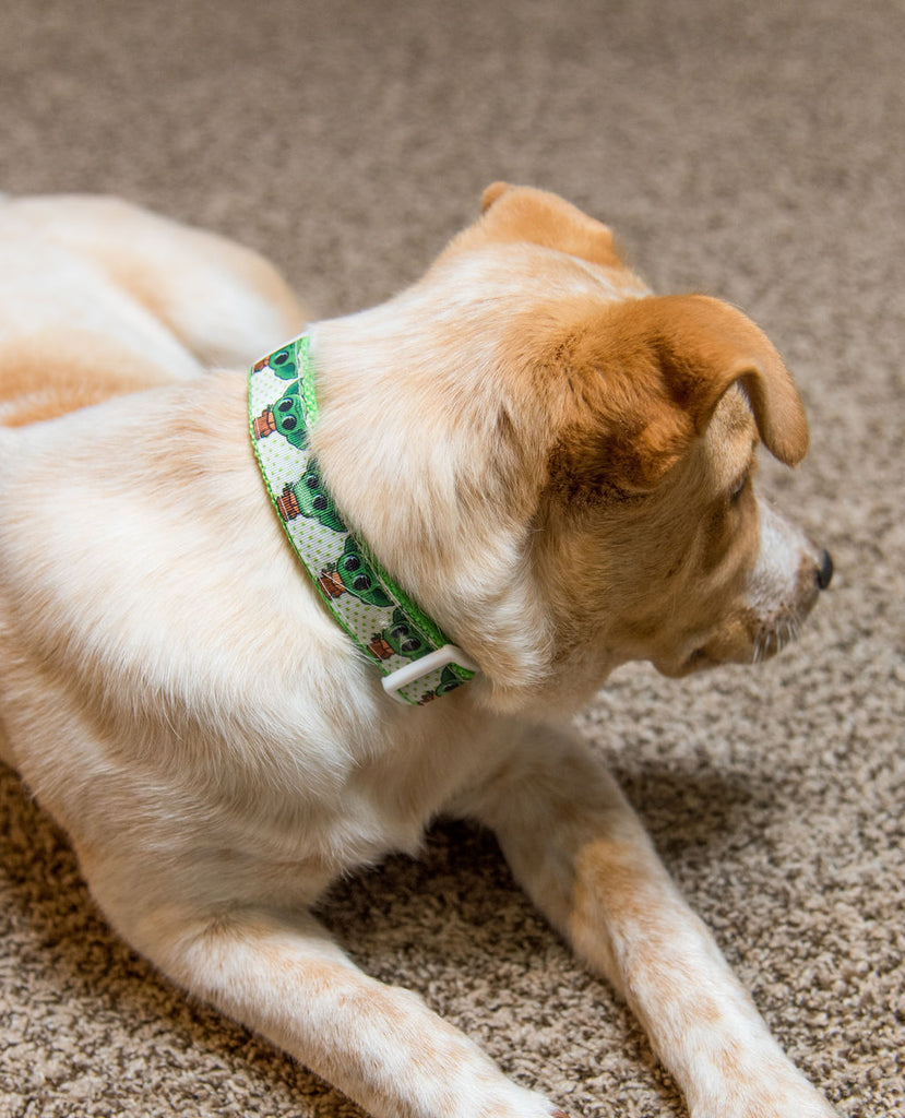 Baby Yoda One Inch Dog Collar - Dapper Xpressions