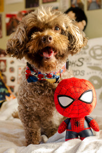 Spider-Man Pet Bow Tie By SweetLooks Collection - SweetLooks Collection