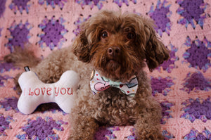 Valentine's Day Conversation Hearts Pet Bow Tie