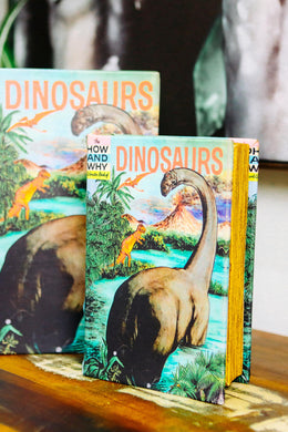 Dinosaurs Book Box - Small