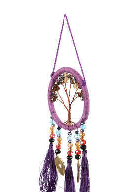 Rainbow Coin Beads Dream Catcher