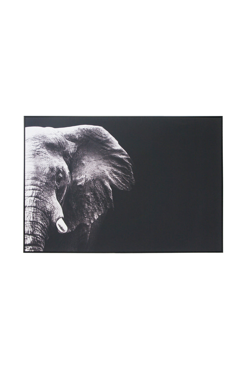 Elephant Portrait Canvas Wall Art