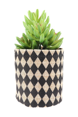 Artificial Succulent Flax Plant Pot