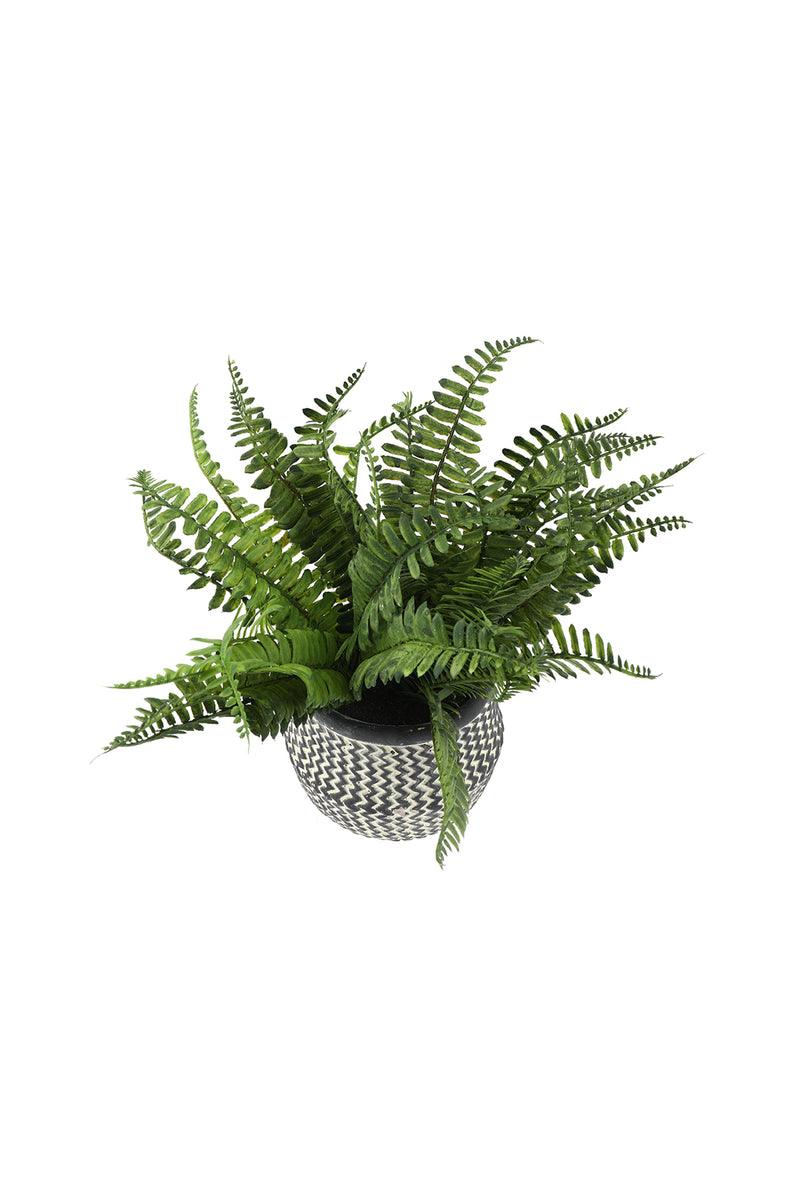 Artificial Fern Cement Plant Pot