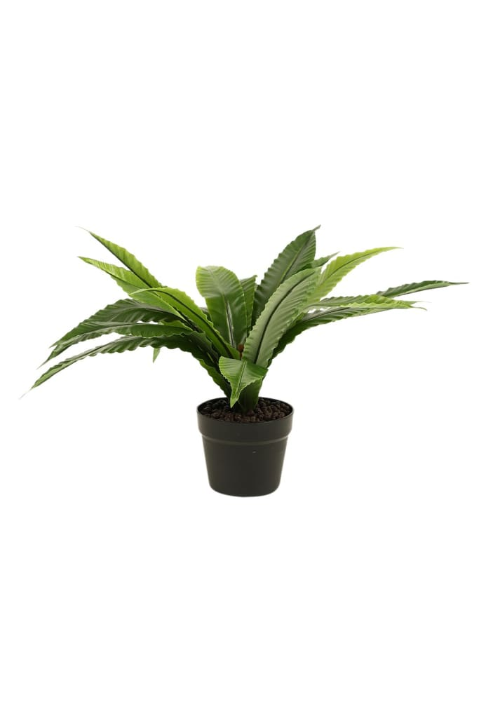 Artificial Birds Nest Fern Pot Plant