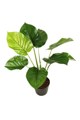 Artificial Pothos Pot Plant