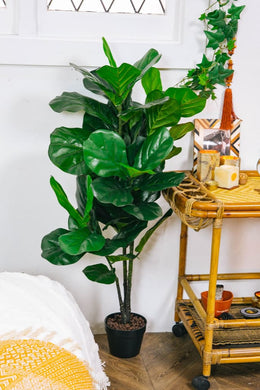 Artificial Rubber Plant Pot