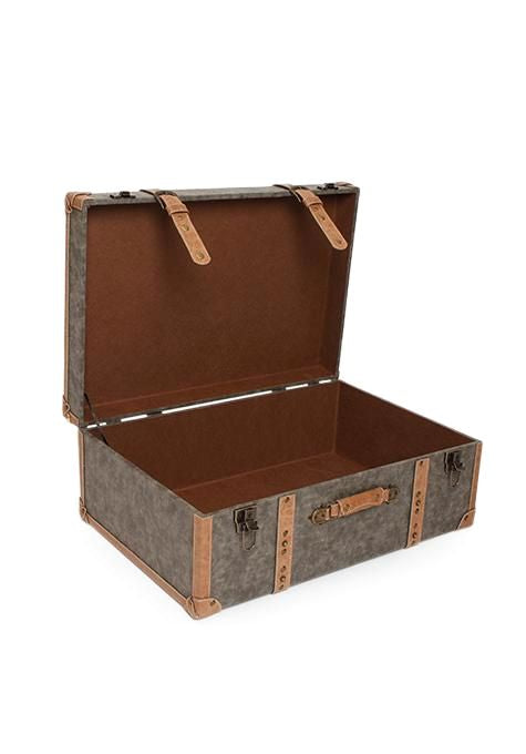 Grey Travel Trunk