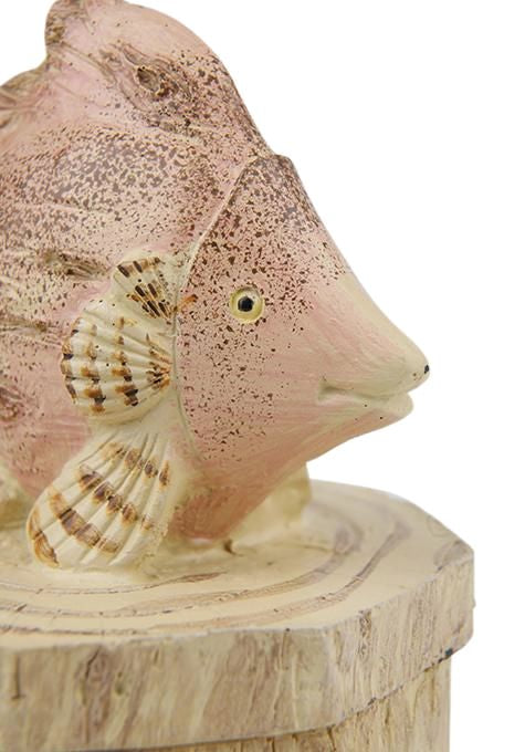 Ocean Fish Jewellery Box