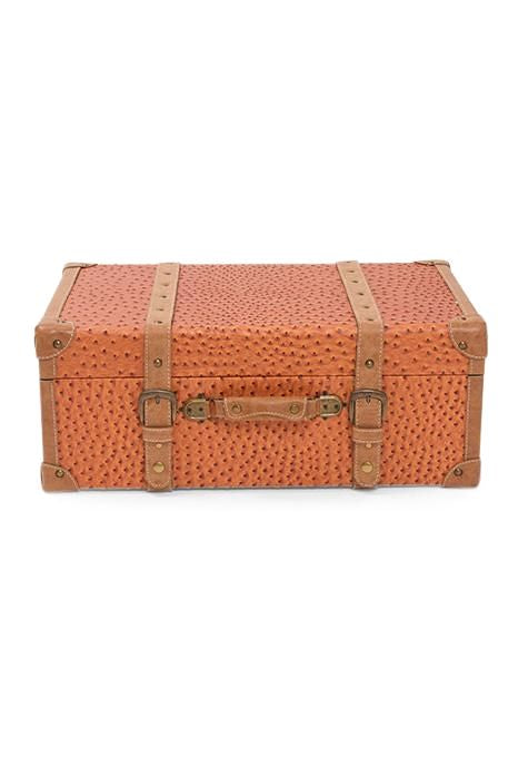 Ochre Travel Trunk