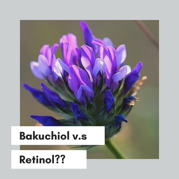 What is phyto-retinol all about?
