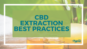 The Importance of CBD Extraction Best Practices