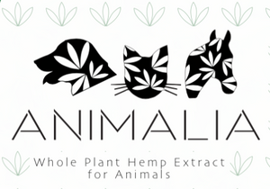 Animalia 1800 - CBD Hemp Oil for Animals - Monthly Membership - Phytorite