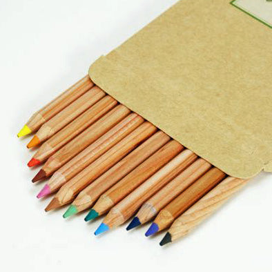 Palomino Forest Choice Set of 12 Colour Pencils - Mimoto Japanese Homewares & Design
