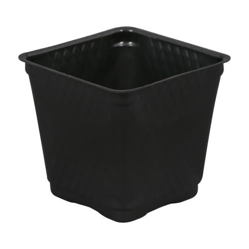 Square Plastic Pot Black 3.5 in