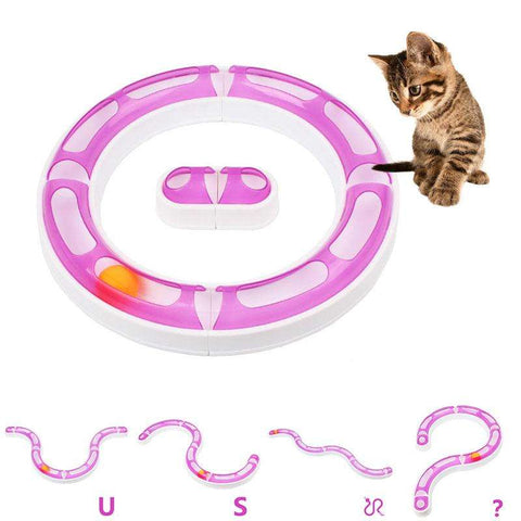 Crazy Ball and Track Cat Toy