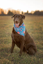 Extra Large dogfandana- all dogfandanas are reversible with team pattern and coordinating solid color fabric