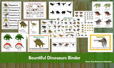 Bountiful Dinosaurs Binder  -  Activity Centres