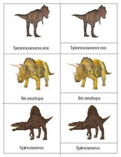 Realistic Dinosaurs: Three Part Cards for Activity Centres