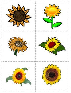 Freebie Fall Push pin/cutting: Sunflowers  and Apples in Colour