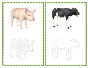 Preschool Farm Animals: Scissor Skills, Pin-poking and Tracing Bundle
