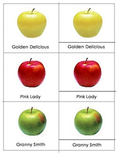 Apple Varieties - Montessori Three Part Cards