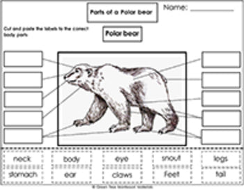 Printables: Label the Parts of a Polar Bear