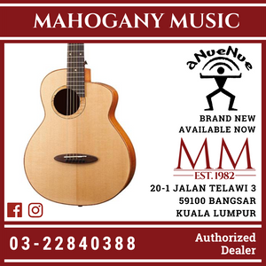 Anuenue M100E Full Solid Fly Bird Acoustic Guitar