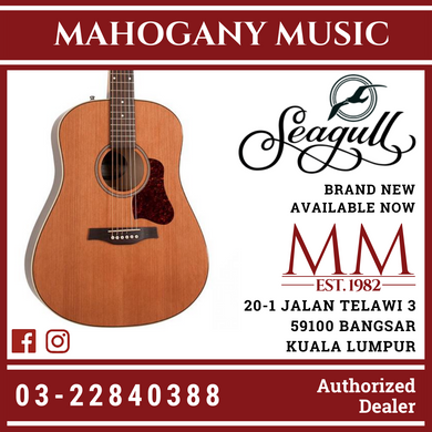 Seagull Coastline Momentum High Gloss A/E Acoustic Guitar 42494