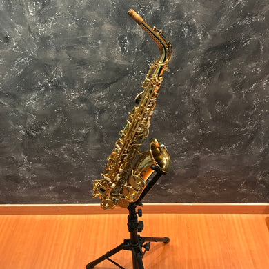 Temby Professional Alto Saxophone Gold 24k